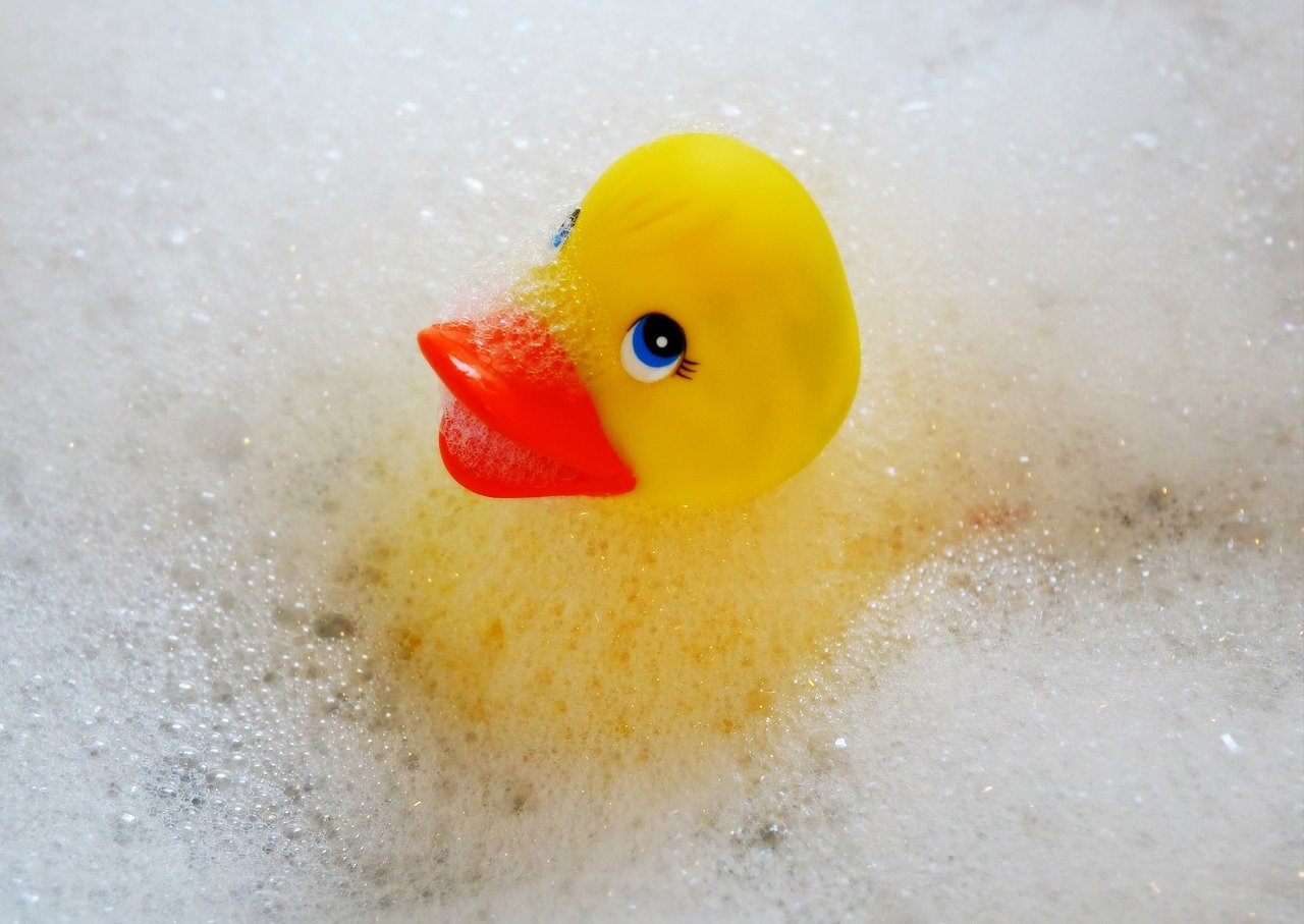 swim, duck, bath accessories